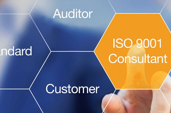 Role to perform as an ISO consultant